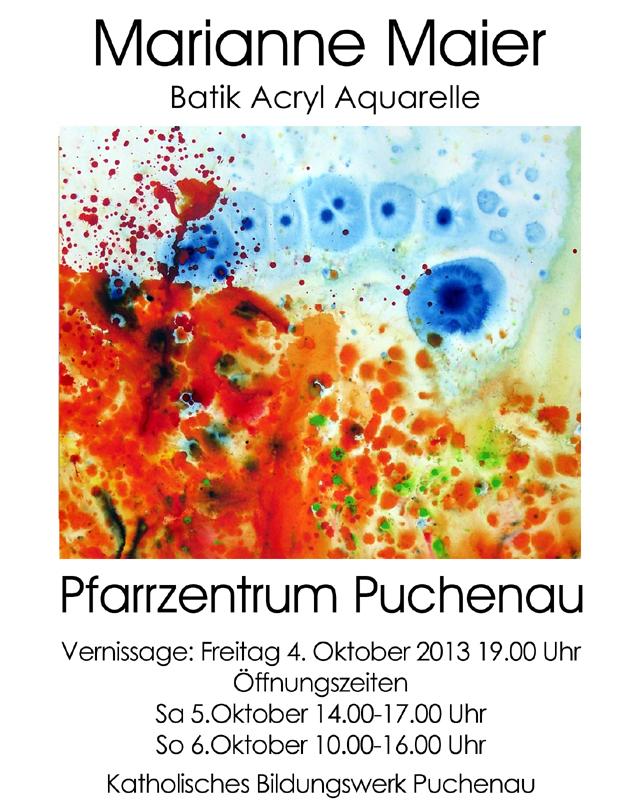 2013_Puchenau_Plakatneusm